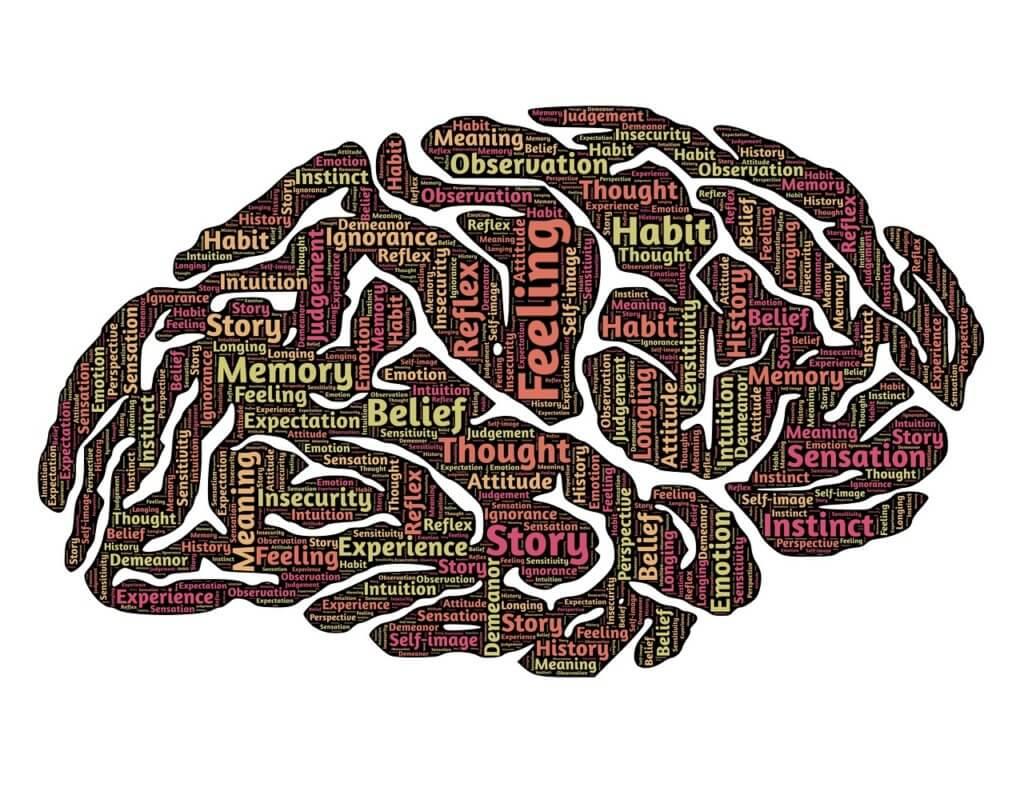 brain-544412_1280