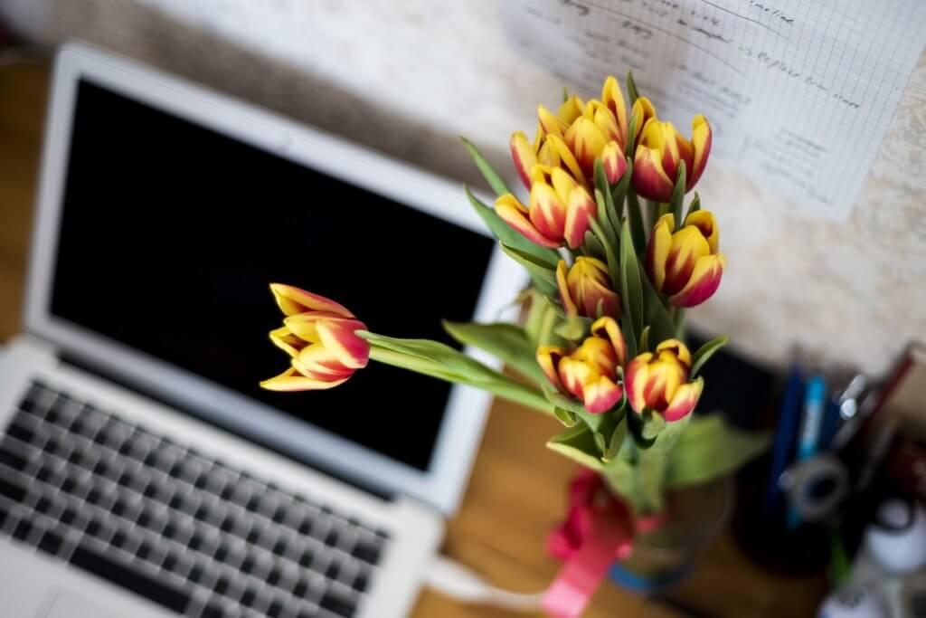 flowers-871685_1920