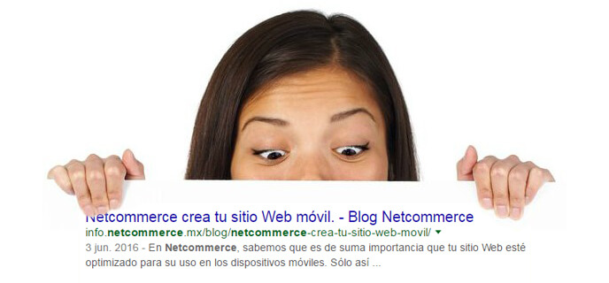 Netcommerce Blog
